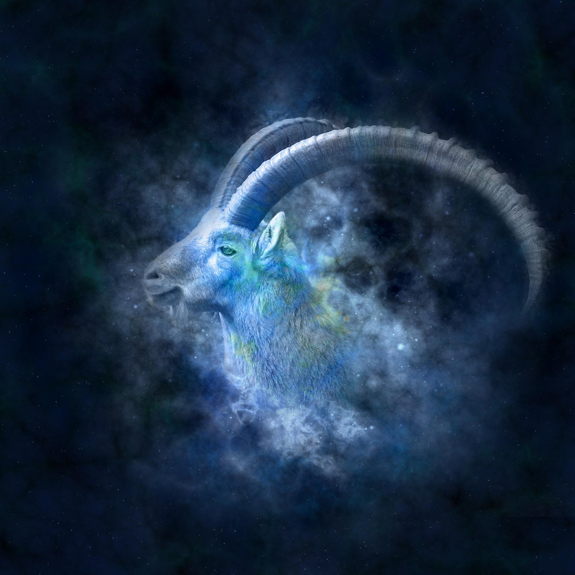 Capricorno: segno zodiacale