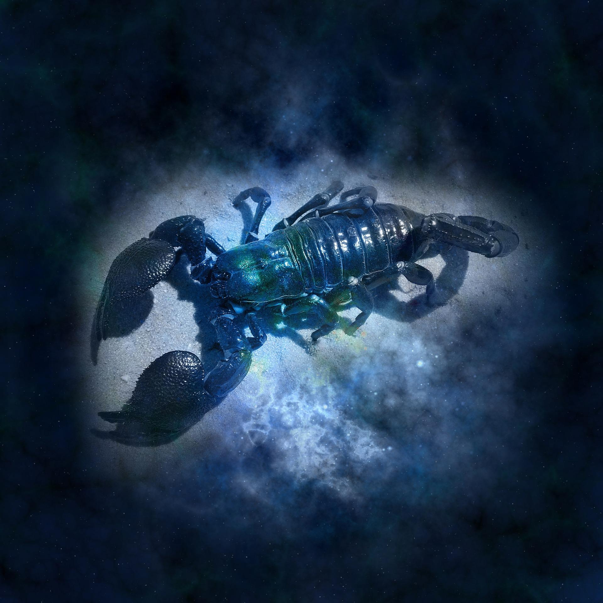 Scorpione: segno zodiacale