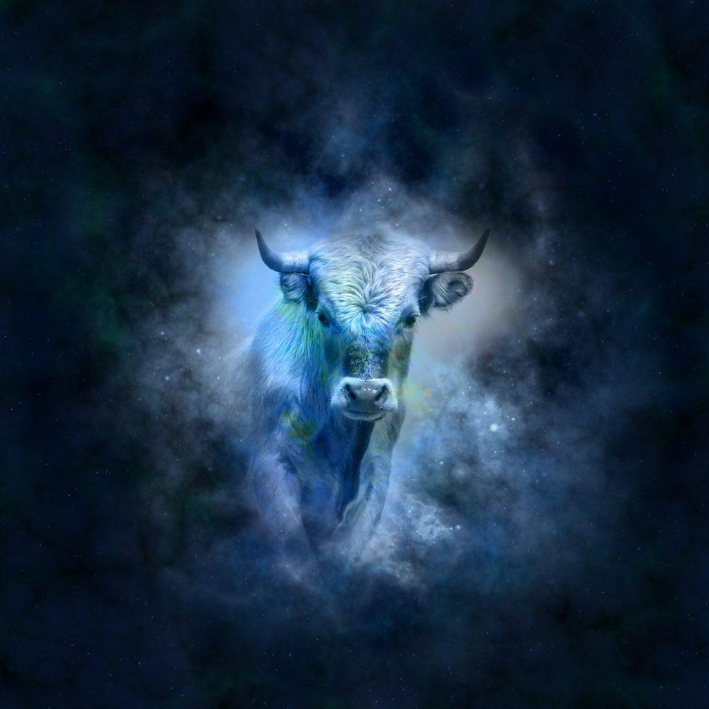 Toro: segno zodiacale