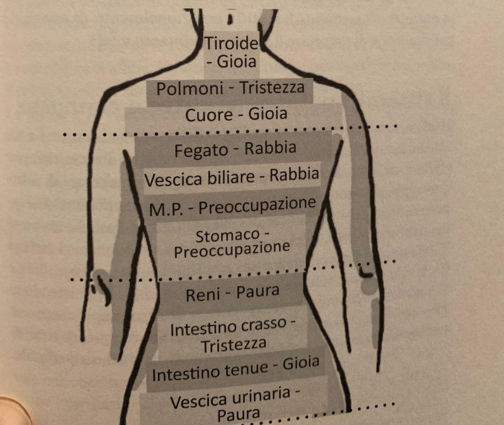 Bioginnastica per il riequilibrio posturale bioenergetico di Stefania Tronconi