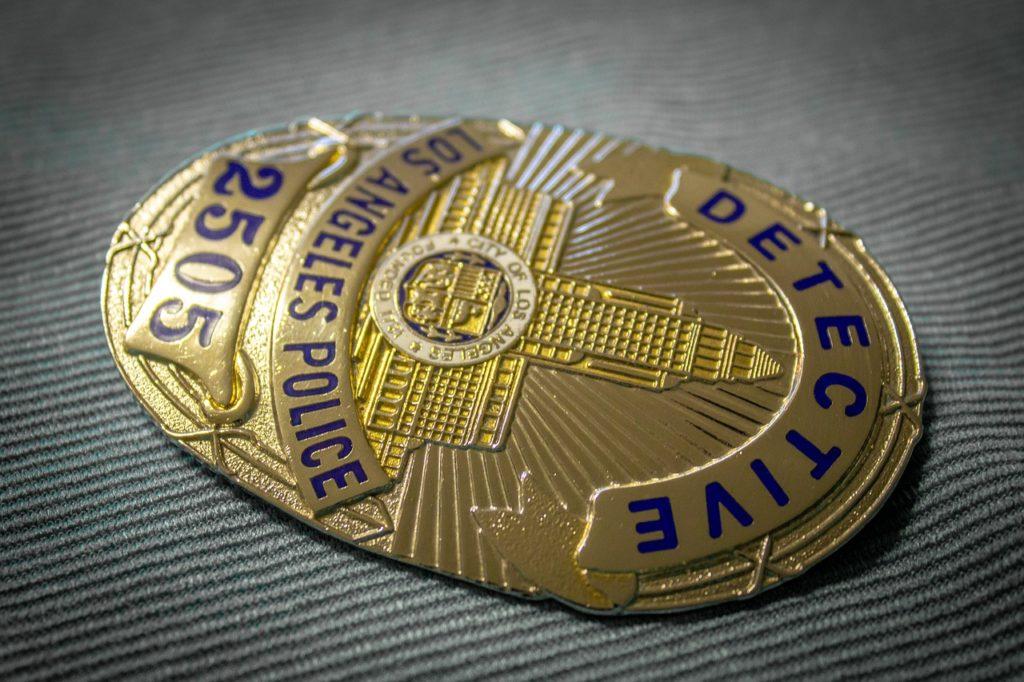 Tecniche di indagine e analisi dei principali fenomeni criminali
