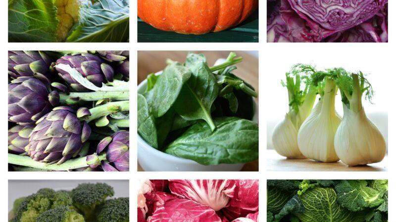 Le verdure di stagione di novembre