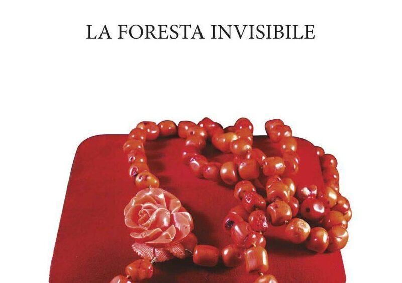 La foresta invisibile: il libro