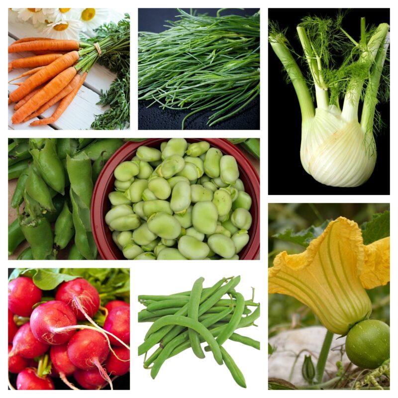 Verdure di stagione: maggio