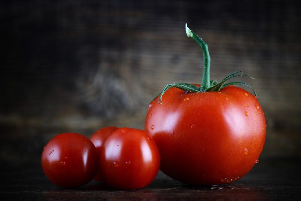 Pomodoro: ricette
