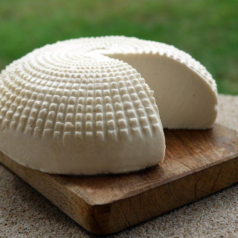 forfresh: formaggio fresco probiotico in imballaggio ecosostenibile